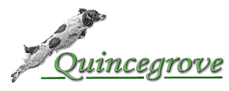 Quincegrove Working Springer Spaniels